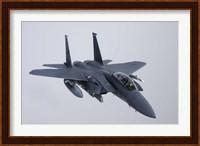 F-15E Strike Eagle of the US Air Force Fine-Art Print