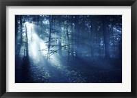 Beam of light in a dark forest, Liselund Slotspark, Denmark Fine-Art Print