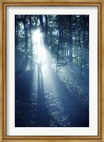 Silhouette of a man standing in the misty rays of a dark forest, Denmark Fine-Art Print