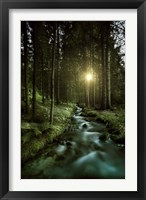Sunset over Small Stream, Pirin National Park, Bulgaria Fine-Art Print