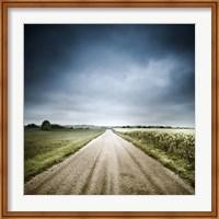 Country road through fields, Denmark Fine-Art Print