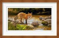 Morning at Honey Creek Fine-Art Print