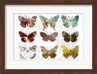 Layered Butterflies II Fine-Art Print