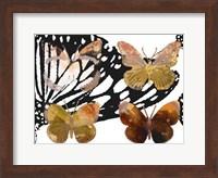 Layered Butterflies III Fine-Art Print