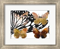 Layered Butterflies III Fine-Art Print