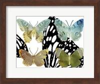 Layered Butterflies IV Fine-Art Print