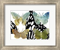 Layered Butterflies IV Fine-Art Print