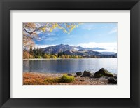 Glendhu Bay, Lake Wanaka, Otago, South Island, New Zealand Fine-Art Print