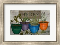 Potted Herbs Fine-Art Print