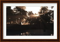 A Late Devonian sun sets behind a forest of Archaeopteris plants Fine-Art Print