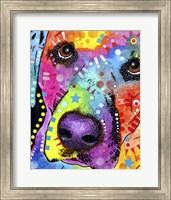 Closeup Labrador Fine-Art Print