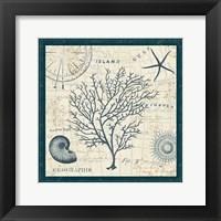Ocean Life IV Fine-Art Print