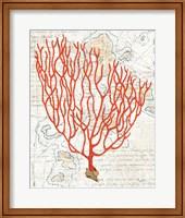 Textured Coral IV Fine-Art Print