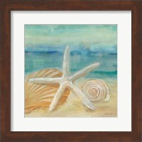 Horizon Shells I Fine-Art Print