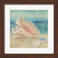 Horizon Shells III Fine-Art Print