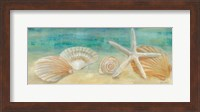 Horizon Shells Panel I Fine-Art Print