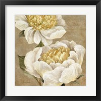 Up Close Cream Peony Fine-Art Print