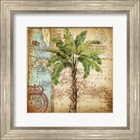 Antique Nautical Palms I Fine-Art Print
