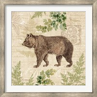 Woodland Trail II (Bear) Fine-Art Print
