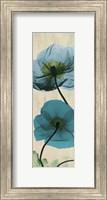 Iceland Poppy 4 Fine-Art Print