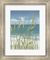 Summer Breeze II Fine-Art Print