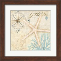 Nautical Shells I Fine-Art Print