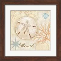 Nautical Shells IV Fine-Art Print