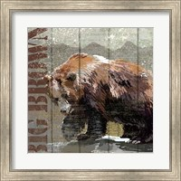 Open Season Bear Fine-Art Print