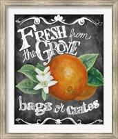 Fresh from the Grove Fine-Art Print
