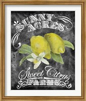 Sunny Acres Fine-Art Print
