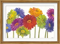 Colorful Gerbera Daisies Fine-Art Print