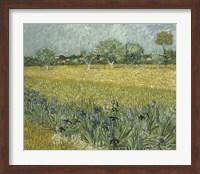 View of Arles with Irises Fine-Art Print