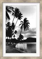 Dreaming of the South Seas, Society Islands, French Polynesia Fine-Art Print