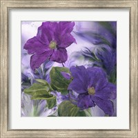 Purple Dream IV Fine-Art Print
