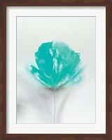 Aqua Sorbet I Fine-Art Print