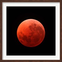 Lunar Eclipse Fine-Art Print
