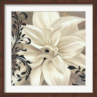Winter White II Fine-Art Print