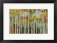 Young Forest III Fine-Art Print