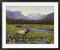 Meadows Of Grand Lake, Colorado Fine-Art Print