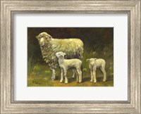 Dolly's Twins Fine-Art Print
