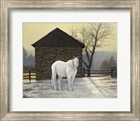 Mare Shed Fine-Art Print