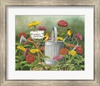 Zinnia Garden Fine-Art Print