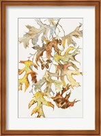 Rust Colored Oak Leaves Fine-Art Print