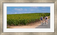 Cyclists in Vineyards of Cote des Blancs Fine-Art Print