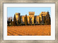 Vineyard with Syrah Vines and Chateau des Fines Roches Fine-Art Print