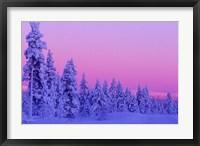 Winter Sunset in Finland Fine-Art Print