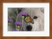 Monarch and Wolf Fine-Art Print