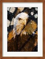 American Bald Eagle I Fine-Art Print