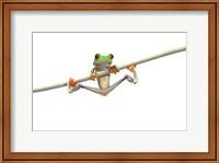 Orange Footed Frog Hanging Fine-Art Print