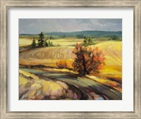 Highland Road Fine-Art Print